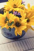 Podzimní květiny — Stock fotografie