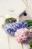 Pohlednici s elegantní květy — Stock fotografie
