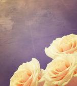 Carte postale avec fleurs élégantes — Photo