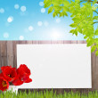 Postcard with fresh spring foliage and empty  place for your tex — Stock Photo #43320577