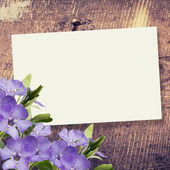 Abstract background for design — Stock Photo