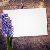 Abstraktní pozadí pro design — Stock fotografie