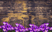 Flowers on wooden background — 图库照片
