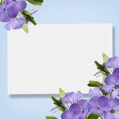 Abstracte achtergrond voor ontwerp — Stockfoto