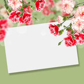 Postcard with elegant  flowers and empty  place for your text — Stock Photo