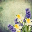 Holiday background with spring flowers — Stock Photo #43685191