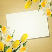 Postcard with elegant  flowers — Stock Photo
