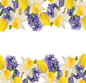 Holiday background with spring flowers  and empty  place for you — Stock Photo