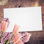 Arka plan tasarımı için — Stok fotoğraf