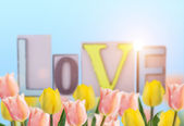 Fresh tulips and word love. — Foto de Stock