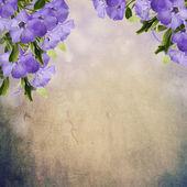 çiçekli kart — Stok fotoğraf