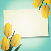 Postcard with tulips — Stockfoto