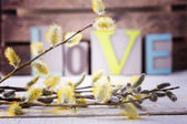 Flowers and love — Stockfoto