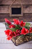 Postal com flores tulipa — Foto Stock