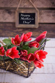 Postcard with tulip flowers — Stockfoto