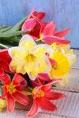 Postcard with spring flowers — Stockfoto