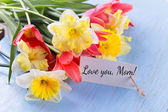 Daffodils and tulips — Stock Photo