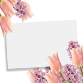 Postcard with flowers — Stock fotografie