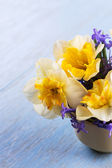 Daffodils and hyacinths — 图库照片