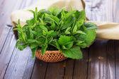 Fresh green melissa and mint — Stock Photo
