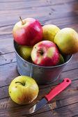Apples in metallic can — Stock Photo