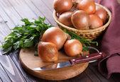 Fresh organic onion — Stock Photo