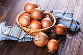 Fresh organic onion — Stock Photo