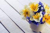 Daffodils and scillas — Stock Photo