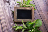 Blackboard and herbs — Stock Photo