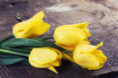 świeże tulipany — Zdjęcie stockowe