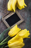 Tulip flowers and empty blackboard — Stok fotoğraf