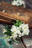Flowering branches — Stock Photo