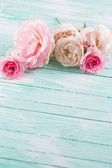 Postcard with fresh roses — Foto de Stock