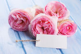 Postcard with fresh roses — Stockfoto
