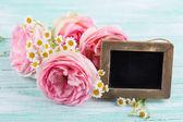 Fresh roses — Zdjęcie stockowe
