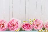 Fresh roses — Stock Photo