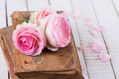 Rose e libri — Foto Stock