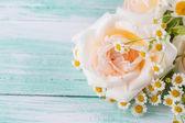Färska rosor — Stockfoto