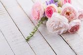 świeże róże — Zdjęcie stockowe