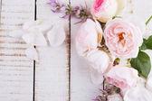 Färska blommor — Stockfoto