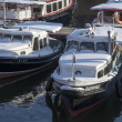 Excursion Boats — Stock Photo