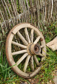 Old wheel from a cart — Stock Photo