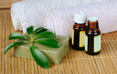 Aromatherapy — Stok fotoğraf