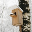 Bird house — Stock Photo #21629997