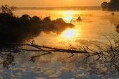Sorge sul fiume — Foto Stock