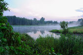 Fog on the lake — Stock Photo