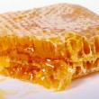 Honey comb — Stock Photo