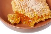 Panal de miel — Foto de Stock