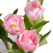 Vase of pink tulips from above — Stock Photo