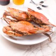 Three cooked crabs and beer — Stock Photo #21526399
